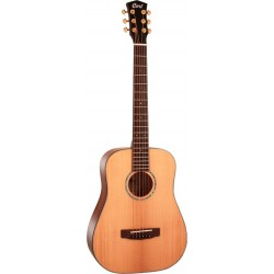 cort-gold-mini-dreadnought-with-bag