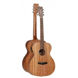 tanglewood-tw2e-orchestra.jpg